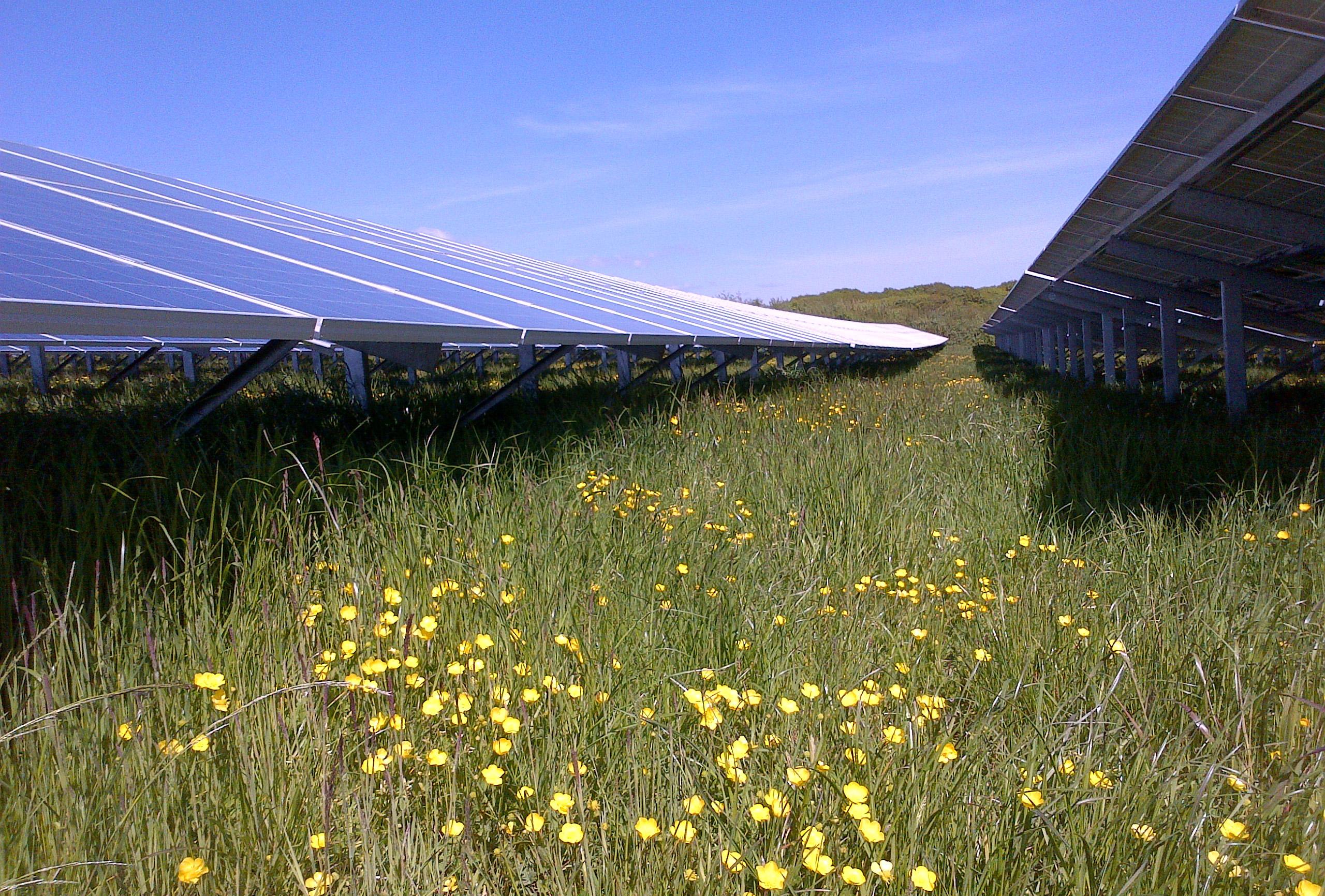 Pyworthy Solar Farm